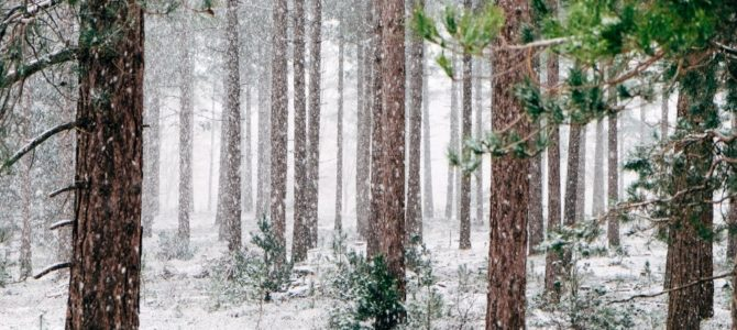 Med vintern kommer behovet av värmeservice